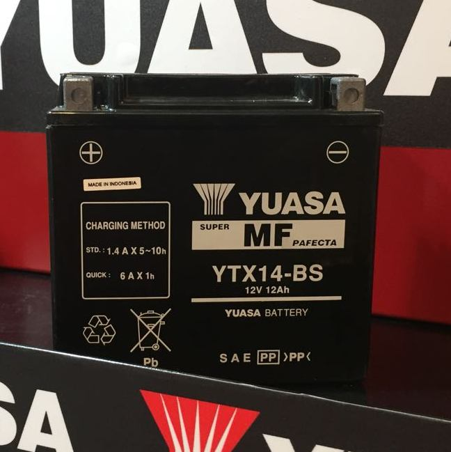 Get it delivered to your door - YUASA YTX14-BS Battery (Indonesia) - 1100 (EGP)