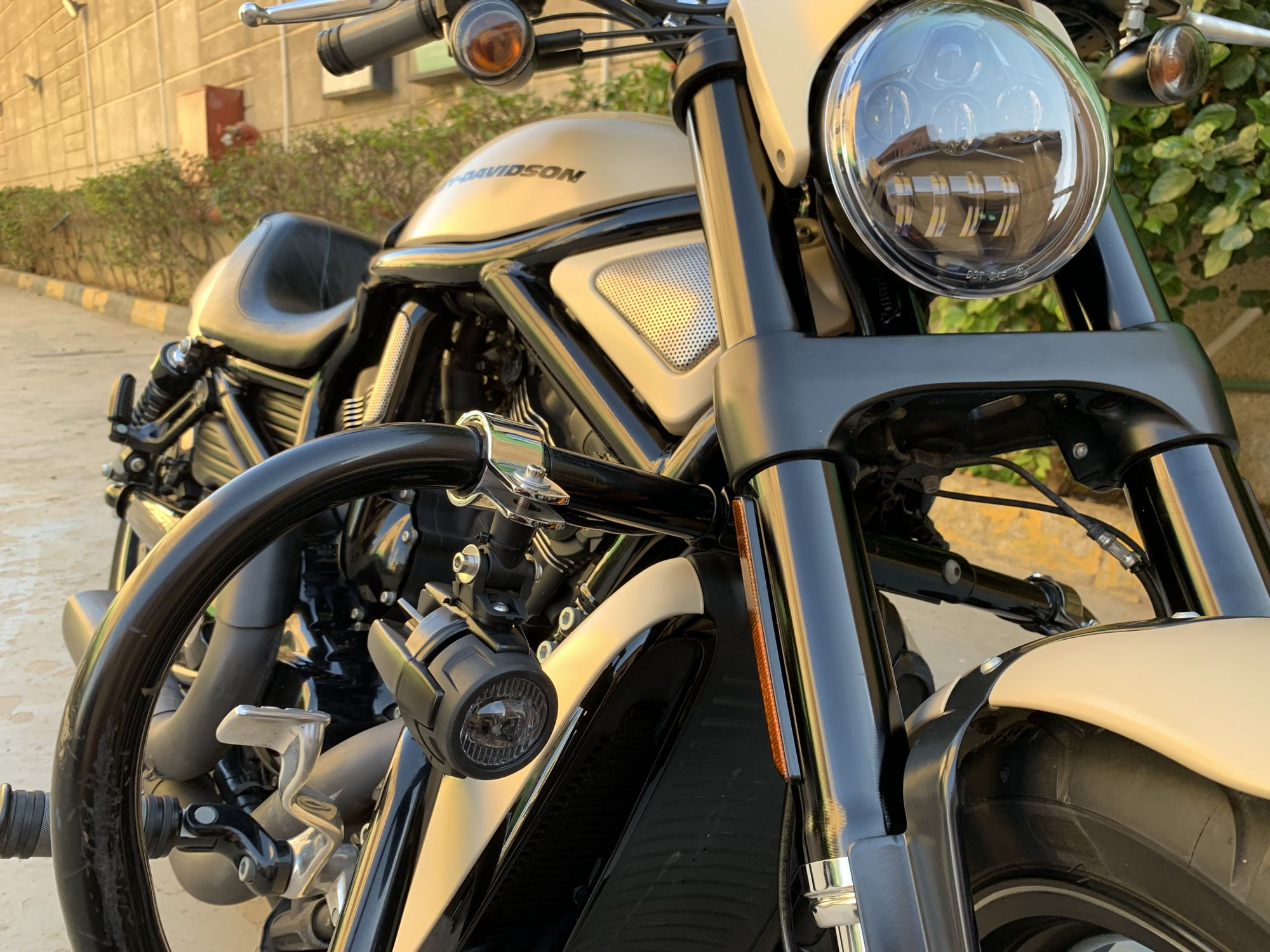 HARLEY-DAVIDSON Night Rod Special  - 2014